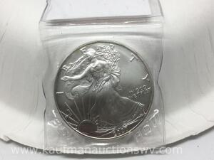 2007 uncirculated silver eagle