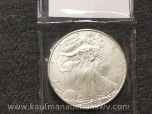 2010 uncirculated silver eagle