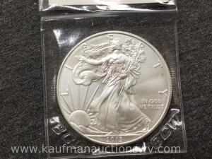 2013 uncirculated silver eagle