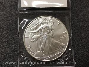 2019 uncirculated silver eagle