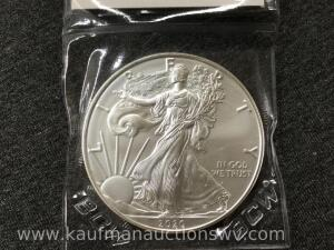 2020 uncirculated silver eagle